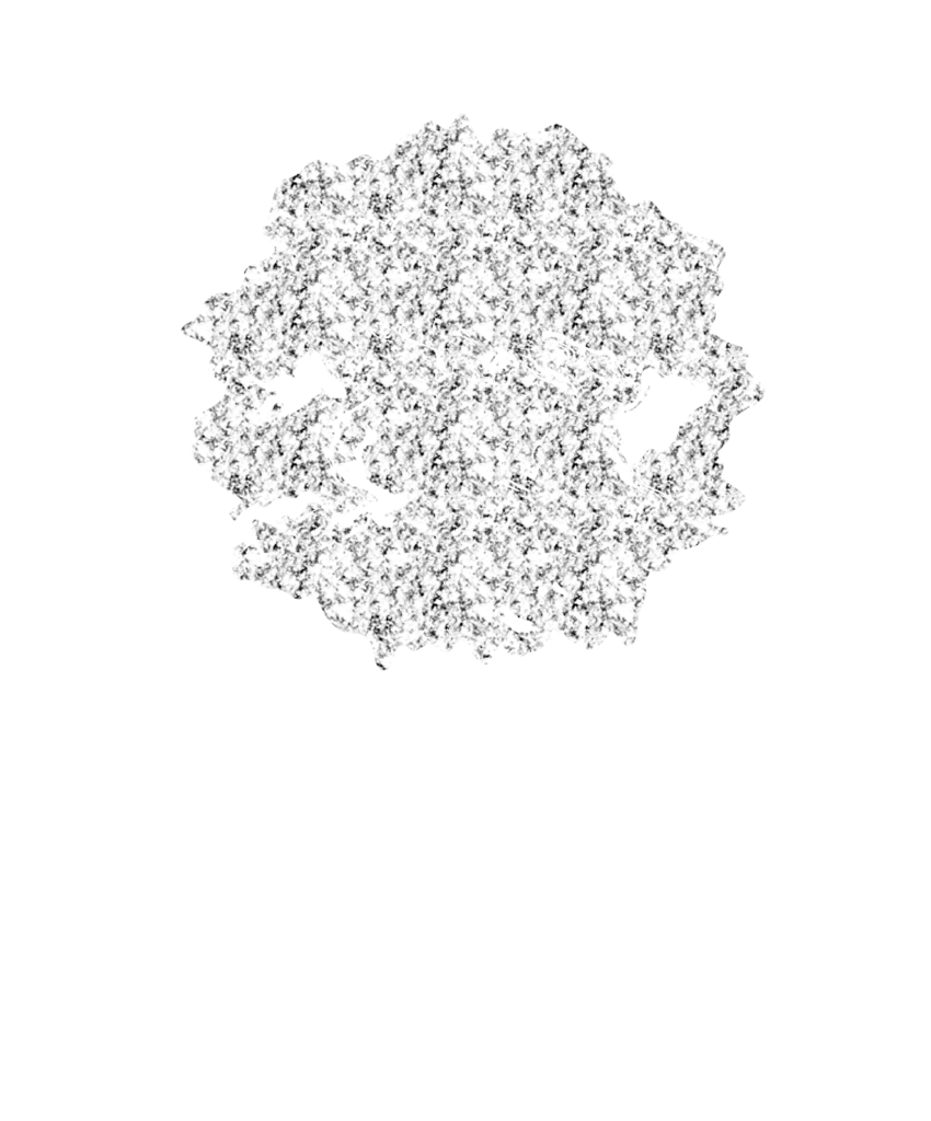 Film Site Studio|映画公式サイト・ホームページ制作専門